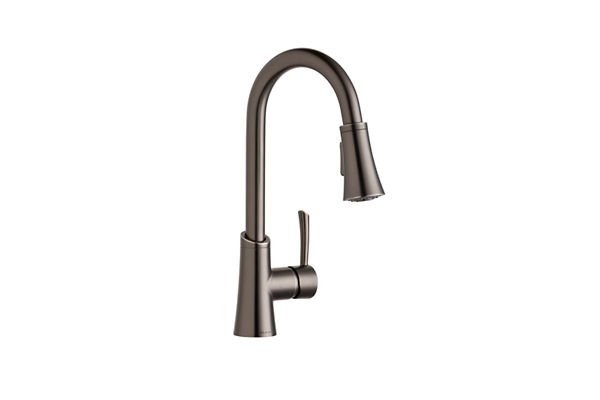 Elkay Gourmet Pull-down Spray Entertainment Faucet